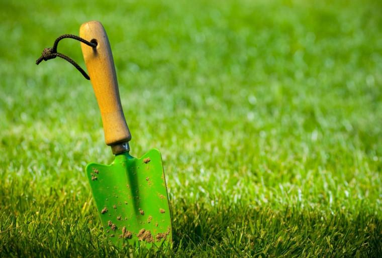 Обработка газона гербицидами против сорняков химическими препаратами против сорняков