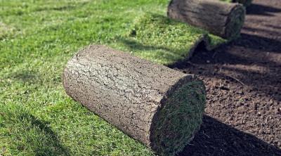 Обустройство рулонных газонов на участках