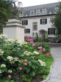 Оформление входа в дом с использованием растений