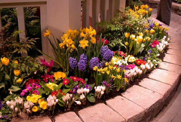 Посадка цветников на участке