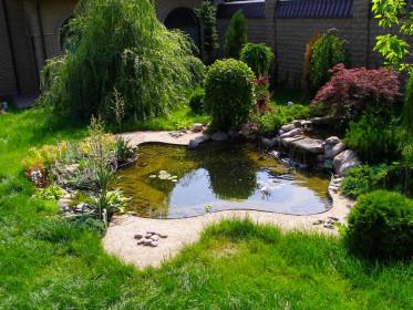 Обустройство водоемов на загородных участках