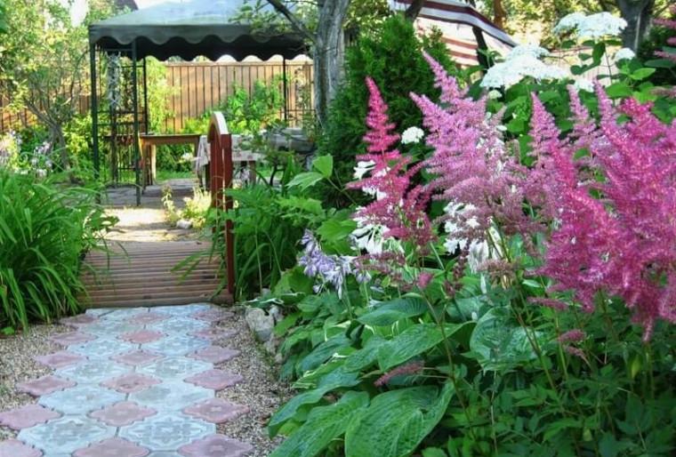 Астильба украшение сада с весны до осени в ландшафтном дизайне