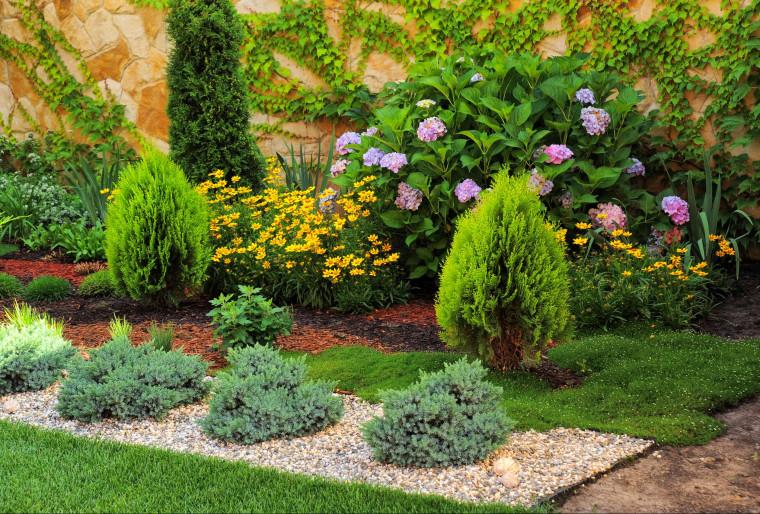 6 идей красивых композиций из хвойных растений от Ландшафтной мастерской Ильи Лациса