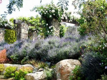 Французский сад добавит ландшафту утонченности