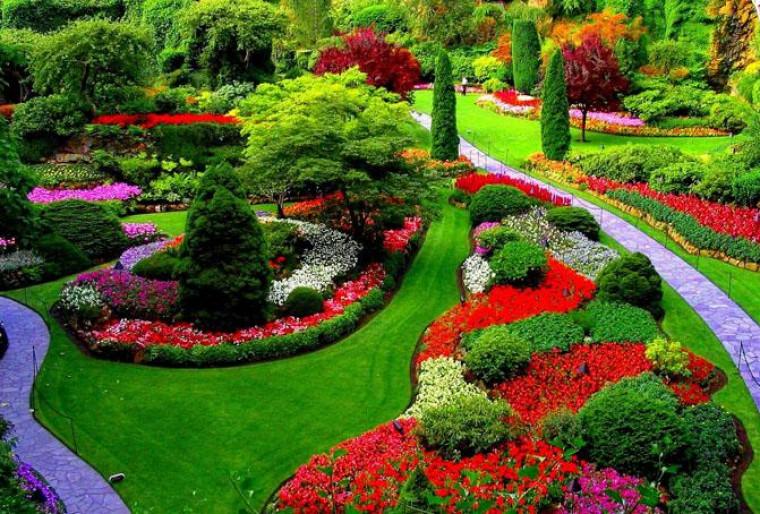 Сочетание цветов в оформлении в ландшафтном дизайне