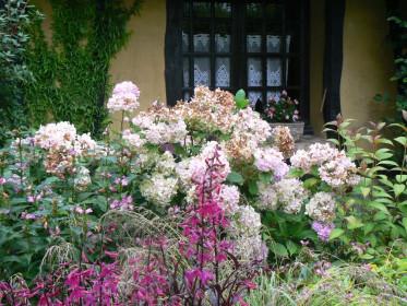 Домашний сад-огород