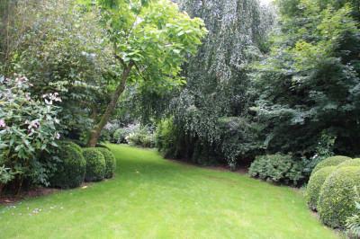 Зеленая трава и лужайка у дома