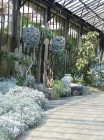 Оранжерея для орхидей и водных растений