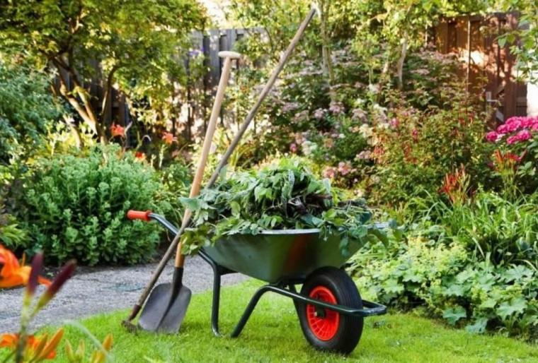 Комплексное профессиональное обслуживание сада