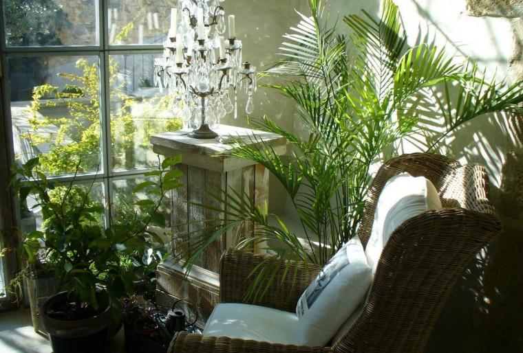 Зимний сад на балконе или лоджии загородного дома и особенности