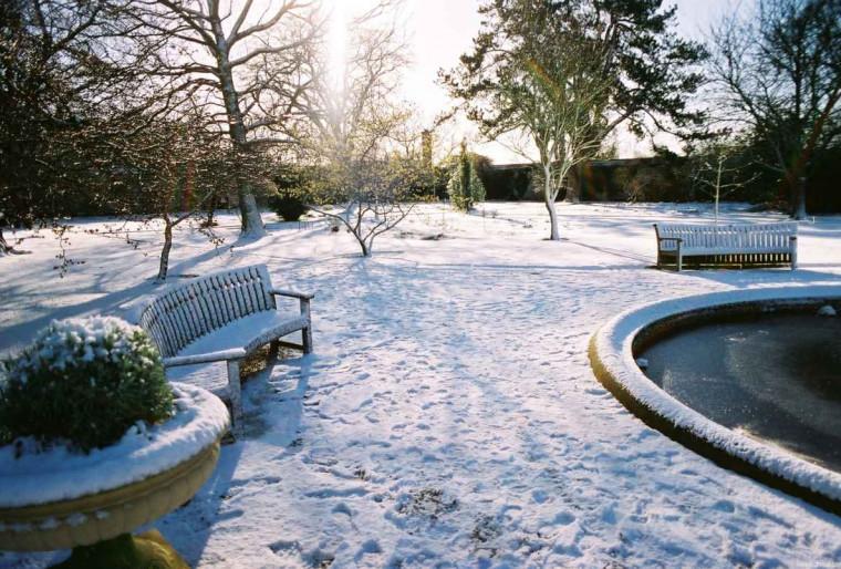 Как создать красивый зимний ландшафт участка