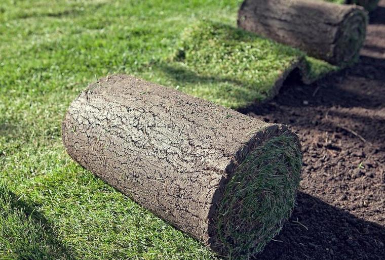 Обустройство рулонных газонов на любых участках