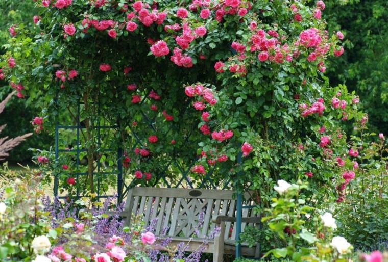 Обустройство и ландшафтный дизайн романтического сада на участке