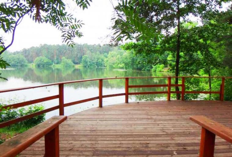 Деревянные заборы и ограждения – визитная карточка загородного участка