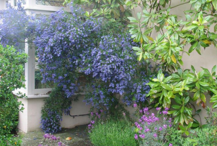 Как оформить крыльцо в загородном доме