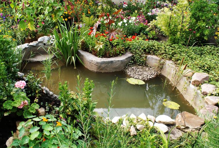 Интересные идеи для оформления водоемов на даче