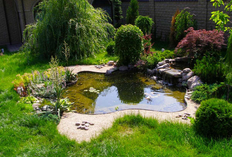 Обустройство водоемов на загородных и дачных участках