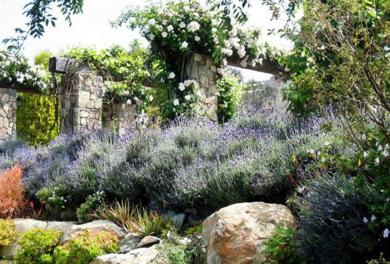 Французский сад добавит ландшафту утонченности и элегантности