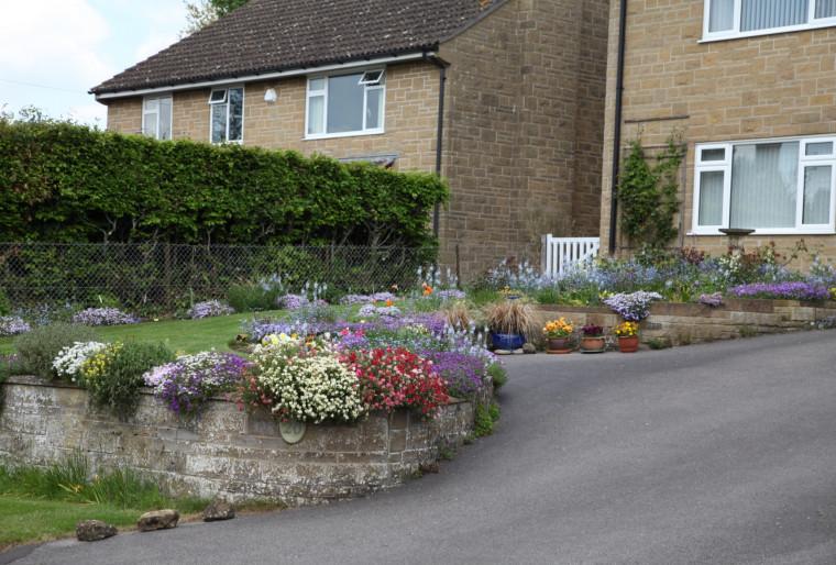 Озеленение придомовых территорий многоквартирных домов