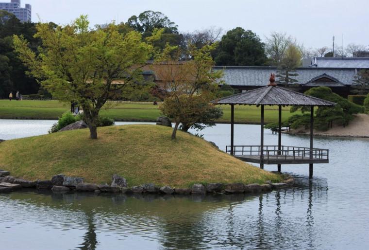 Восточный и Японский пруды на участке
