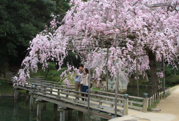 Особенности символических садов дзен