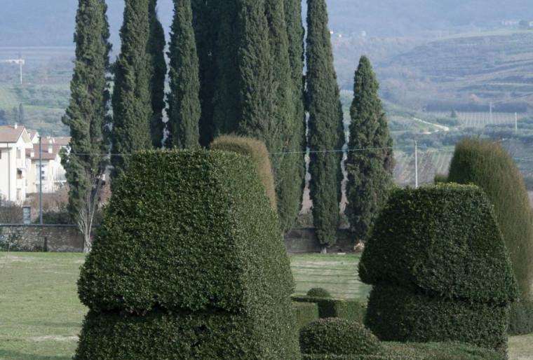 8 принципов ландшафтного дизайна при проектировании сада