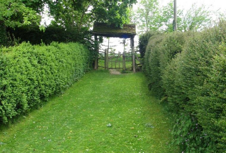 Комнаты в садах на участке