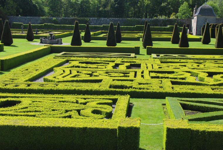 Французские регулярные сады а ландшафтном дизайне